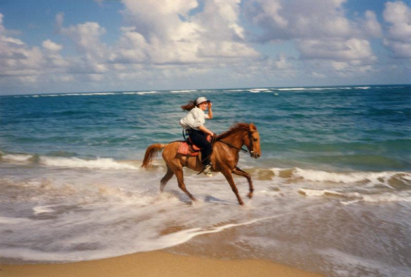 Cavalcando i pensieri diario di uno spirito libero for Disegni della casa sulla spiaggia